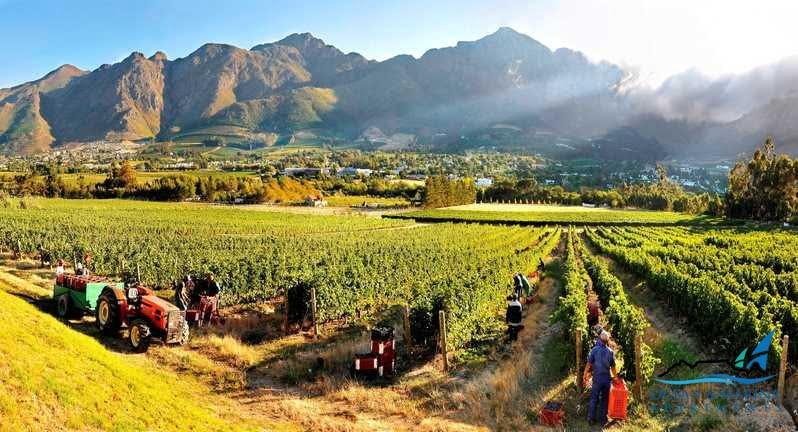Outdoor activity - Winelands